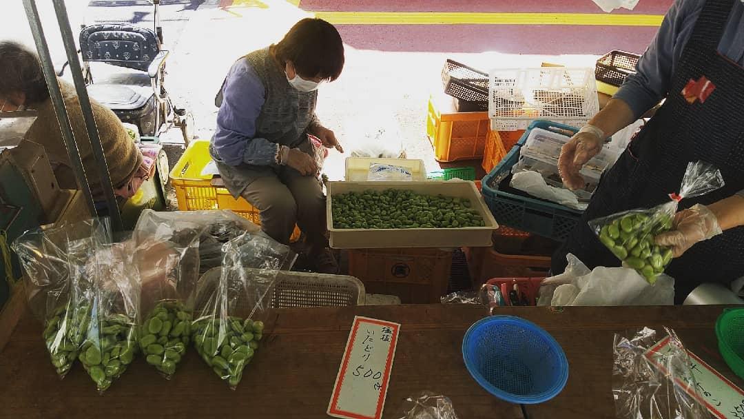 そら豆、たくさん出てます。前日にカラむきすると変色してしまうので、当日せっせと…なかなか大変そうです。