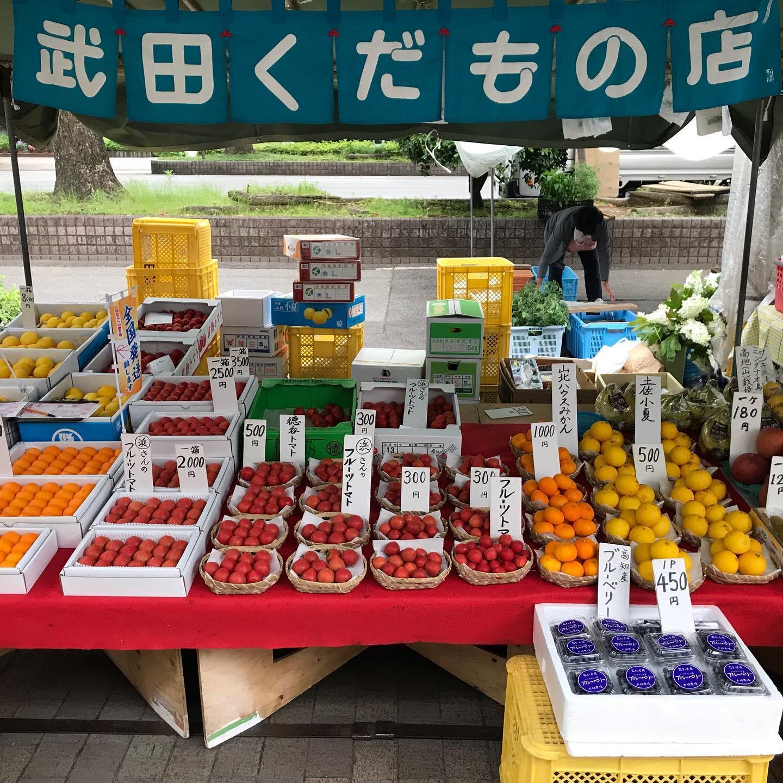 【木曜市24番*武田くだもの店】木曜市出店しています。ただ今、雨が降り始めました。土佐小夏、ハウスみかん、フルーツトマトが美味しいです。#日曜市くだもの #武田くだもの店#武田青果 #ウエルカムホテル高知から西へすぐ